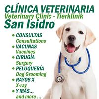 veterinario san isidro