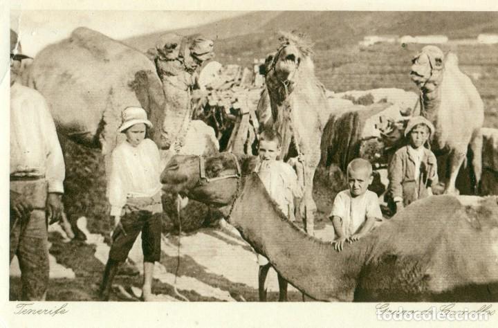 Mis tiempos del Sur (X). Toponimia y Realidad (2): 'Cueva de los Camellos'