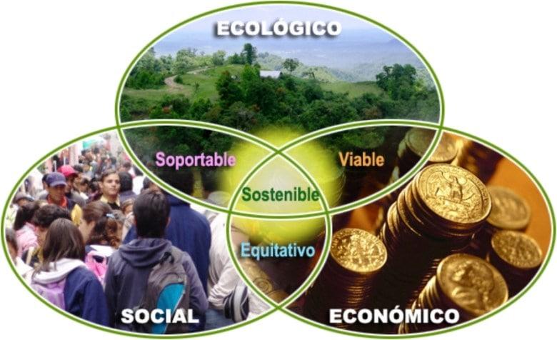 Educando en 'sostenibilidad' y 'medioambiente'