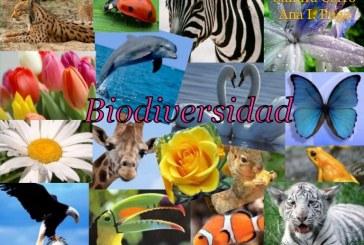 La conservación de la 'Diversidad Biológica', un compromiso urgente de tod@s