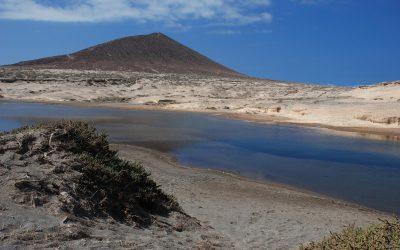 Pelada, Bocinegro, Montaña Roja y abandono de las sismitas