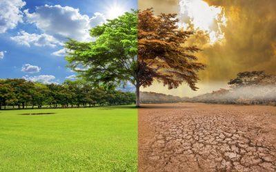 La urgencia de actuar contra el 'cambio climático' con propuestas 'sostenibles' (I)